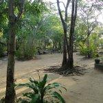 Foto de Asnara Village