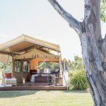 The tents at Spicers Canopy
