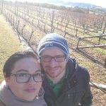 Frogmore Vinyards - Great wine