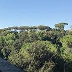 Photo of Monte Pincio