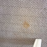 More Stains on the suite carpets