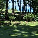 Photo of Le Bois de Moutiers