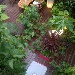 jardin d'eden bis