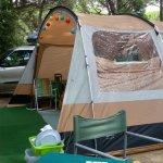 Unser Zelt auf einem großen, schattigen Platz unter Pinien