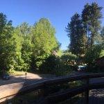 Photo de Creekside Inn & Resort