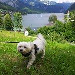 Photo de Mondi-Holiday Seeblickhotel
