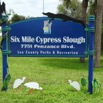 Photo of Six Mile Cypress Slough Preserve