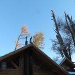 Photo of Tillka - Casas de Montana