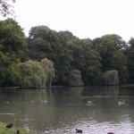 Foto de Jardín inglés