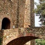 Castell Cartoixa de Vallparadís