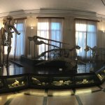 La sala scheletri