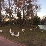 Photo of Parque 3 de Febrero