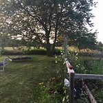 Photo de The Broad Meadow Bed & Breakfast