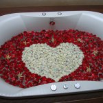 """Our """"35th anniversary"""" jacuzzi tub - rose petals galore!"""
