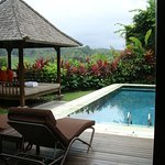Our private swimming pool and day bed