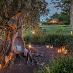 Spicers Tamarind by sunset