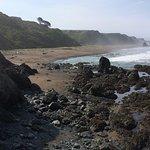 Irish Beach and its tidepools