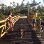 Photo of Imbassai Beach