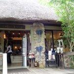 Londolozi Tree Camp Gift Shop