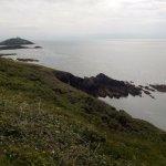 Photo of Ballycotton Cliff Walk