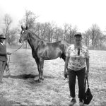Picture you get emailed with Man O'War