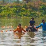 Water Buffalo Ride