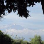 View of Mt. Kilamanjaro