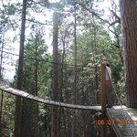 Parc Aventures Cap Jaseux Image