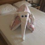 Photo de Sindbad Aqua Hotel & Spa