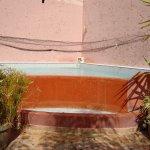 piscine ne terrase