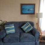 Lembro que fiquei tão empolgado em ver um sofá azul que tirei uma soneca. joke