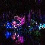 Inside Na'vi River Adventure