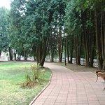 Foto Snegiri