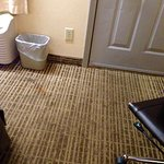 Baymont Inn & Suites Roanoke Rapids Foto