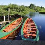 Photo of Tariri Amazon Lodge