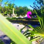Photo de Exuma Vacation Cottages