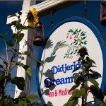 Foto de Didjeridoo Dreamtime Inn