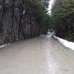 camino a Lapataia (12km)