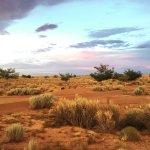 Photo de Homolovi State Park