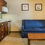 King Suite: Enjoy more space, seating, and a convenient kitchenette