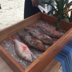 Fresh Fish Market on the beach
