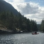 Foto de West Coast Wilderness Lodge