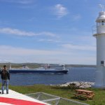 Lighthouse Picnics take place on Channel Head. Get an upclose view of the Gulf ferry.