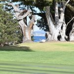 The Pacific Grove course offers superb views over Monterey and the bay.