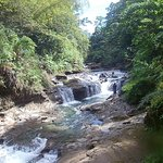 Upper Navua River