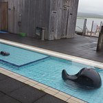 Pool, sauna and steam rooms