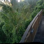 Panorama view from the pool deck