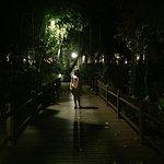 Twin Lotus Resort & Spa by Burasari Foto