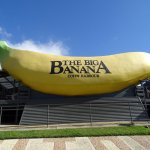 Photo of The Big Banana