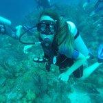 Amazing dive!